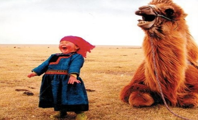 girls and camel laughing